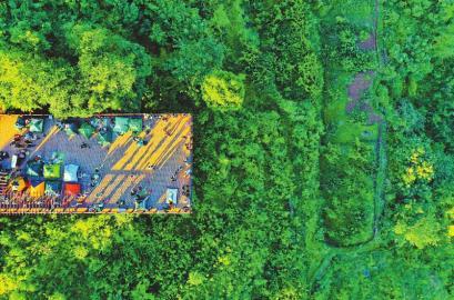 成都森林覆盖率由40年前的23%上升到现在的40.2%