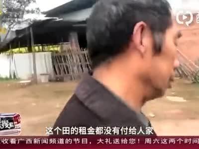 """四川乐山:农田变""""坟场"""" 农田主吐槽粮食没法种"""