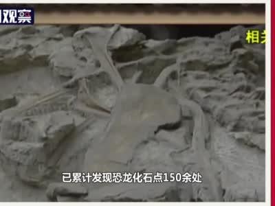 视频丨四川印记十四:自贡发现恐龙化石群