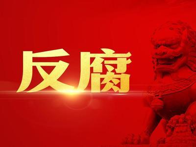 四川华西集团有限公司董事、副总经理杨硕 接受纪律审查监察调