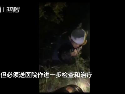车辆坠崖驾驶员失联 民警下山搜救轮流背伤员