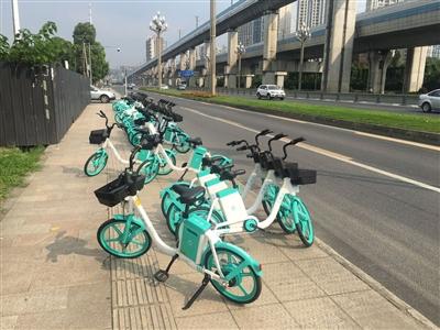 街面上的共享电单车均没有牌照