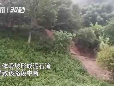 山体滑坡形成泥石流 四川攀西高速德昌至蒲坝方向道路中断