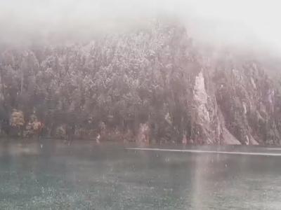 美!九寨沟下雪了 雾笼山头雪压枝