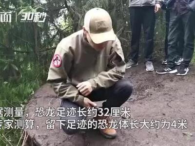 四川盆地北部边缘首次发现恐龙足迹 估测恐龙体长4米