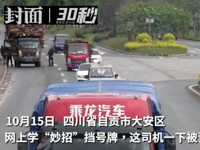 """网上学遮挡号牌""""妙招"""",四川自贡这司机丢了13分"""