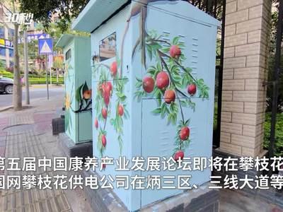 漂亮!四川攀枝花街头配电箱换新装 箱体画上了彩绘图案