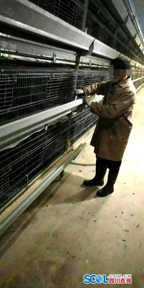 湖北人在乐山夹江找到了工作:包吃包住,想好好干下去
