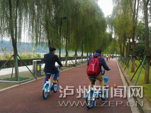 布局高校附近顽强的共享单车又来泸州了 交警:未取得许可
