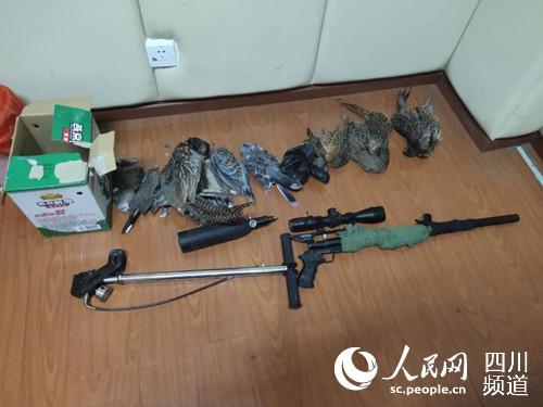 民警搜查出的作案工具及鸟类尸体。