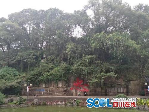 作为泸州市资历最老、人气最高的公园,江阳区忠山公园的保护一直都在进行。