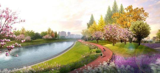 新总规看成都40年之变:从人均公共绿地1平米到在公园中建城市
