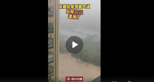 四川日报抖音截图