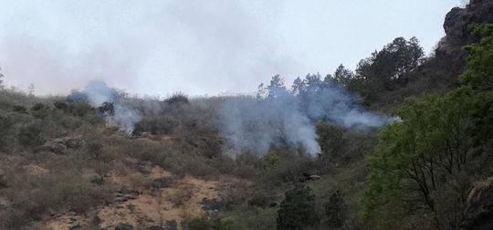 村民放鞭炮驱猴引发草原火灾 300多人扑救了近2天