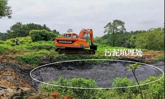 """触目惊心!长江附近涌""""牛奶水""""、10万吨污泥埋田……"""