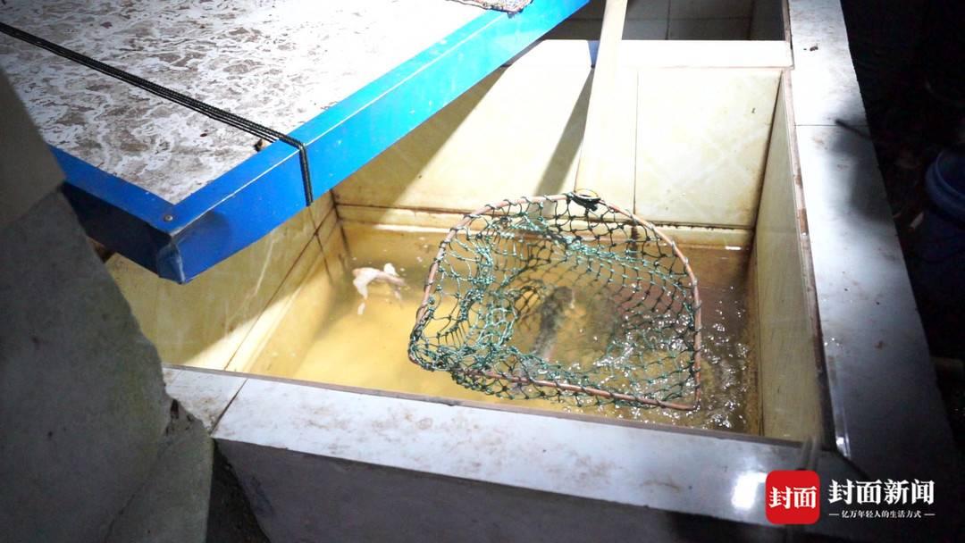 自贡侦破长江流域禁捕令后沱江非法捕捞第一案