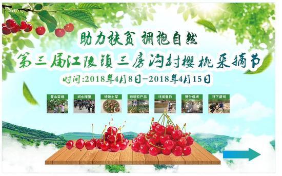 江陵镇第三届樱桃采摘节开幕