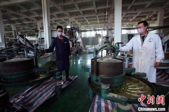 茶厂车间生产忙 王磊 摄