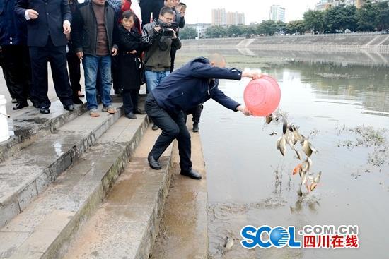 禁渔期非法捕捞 成都男子被责令投放5000余尾鱼苗