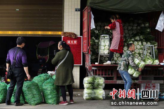 蔬菜批发商在为客户搬运大白菜 王磊 摄