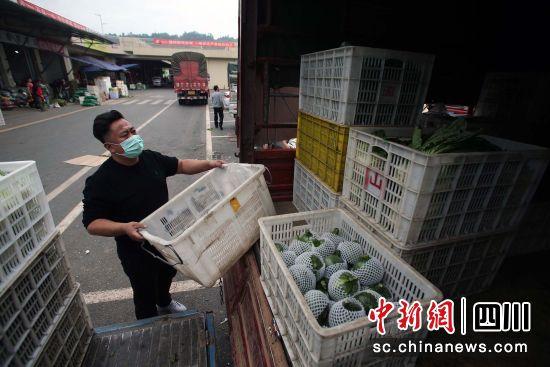 来自甘孜藏区的采购商郑先生在整理货车上的新鲜蔬菜 王磊 摄