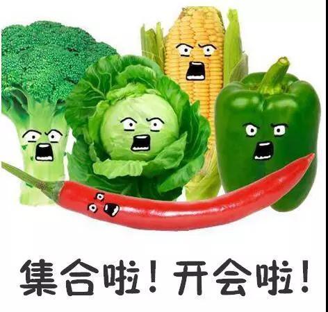 蔬菜界峰会来袭 高手云集