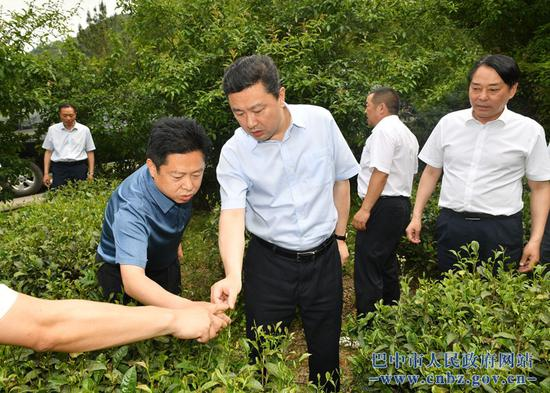 罗增斌到通江县调研督导脱贫攻坚、产业发展工作