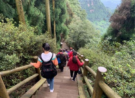 游客走在森林康养步道。图片来源:玉屏山森林康养基地