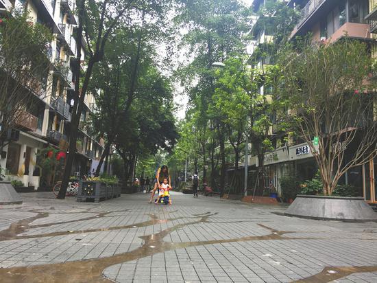 """""""商居联盟""""的建立,让泡桐树街有了安静整洁的环境。"""