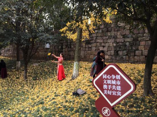 不到半个小时的时间,至少有20名市民先后踩进花坛拍照。(宜宾新闻网 龙亿江 摄)