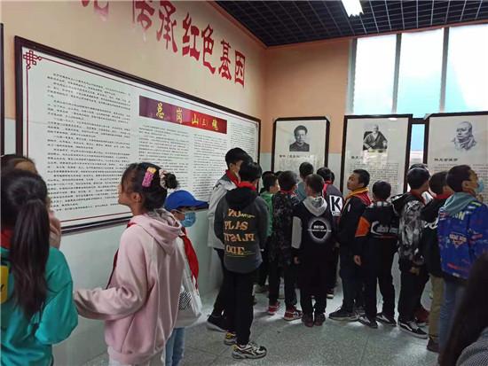 洪雅县中山小学党支部开展主题教育