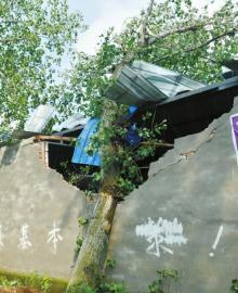 不少房屋在大风中受损,被掀翻的屋顶四处散落。