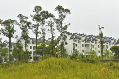 9月1日,崇州市道明镇东岳村4组,村民望着即将完工的安置新房,却一点也高兴不起来。