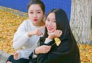 成都女大学生校园摆拍 与银杏争美