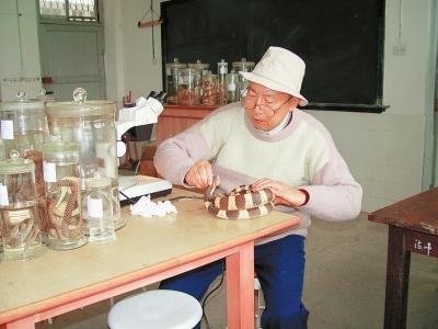 赵尔宓院士在实验室里工作。(受访者供图)