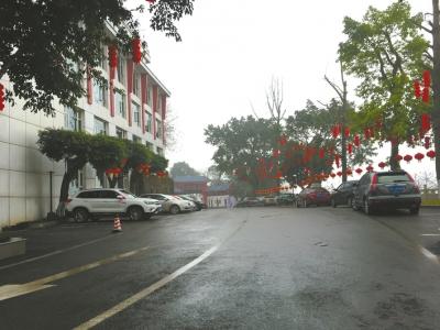泸州一场小雨打湿了路面。徐庆摄