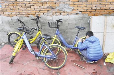 孩子展示如何打开一代永安行共享单车的车锁