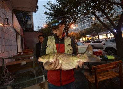 李雷宗展示9.52斤重的大鲫鱼 摄影记者 陶轲