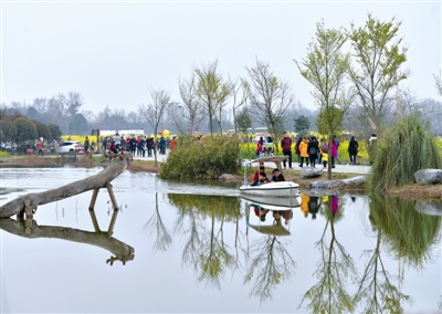 3月8日,很多市民来到三道堰青杠树村游玩 摄影记者 陶轲