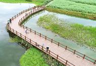 俯瞰天鹅湖湿地公园生态美景
