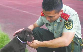 成都夫妇捐狗遂宁消防 希望它成为搜救犬