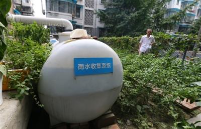 菜园里面装有雨水收集系统,灌溉都不用自来水