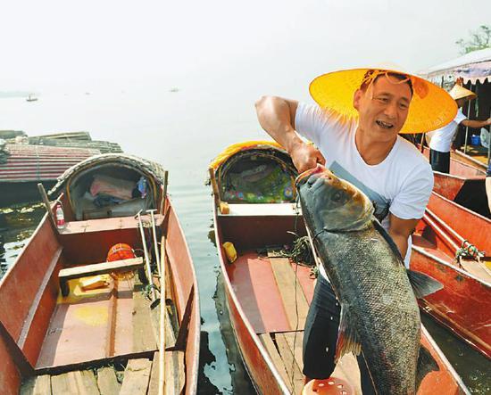 """开海节上,""""捕鱼王""""杨国荣捕到一条肥美的大鱼。"""