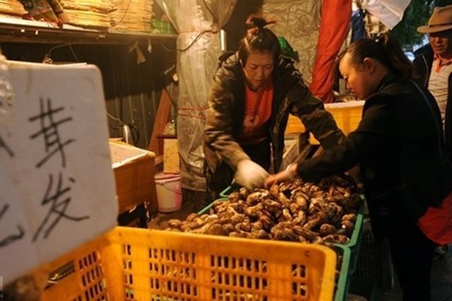 最鲜最香的松茸在这里 直击高原松茸交易早市