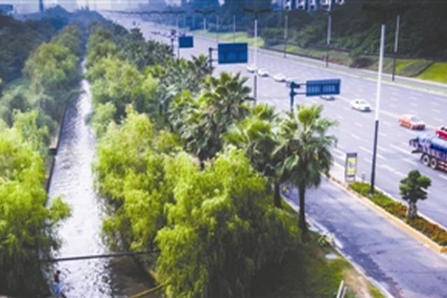 成都龙泉驿区河长制治水成效明显 陡沟河再现水清岸绿