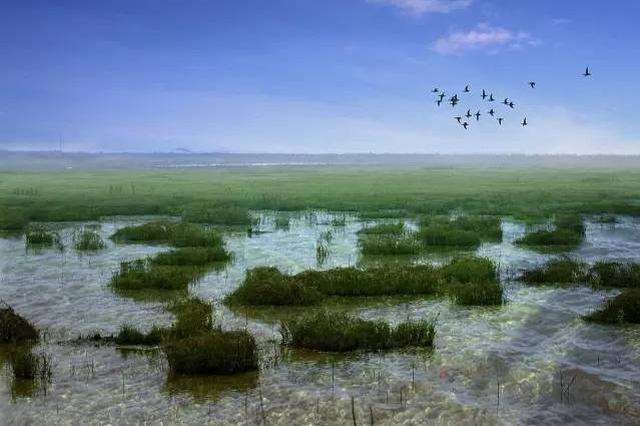 中国推出首批10家国家湿地旅游示范基地