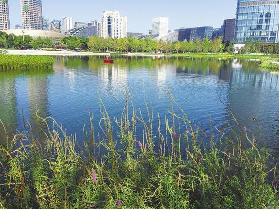 交子公园生态湖美景。 万瑶 摄(视觉四川)