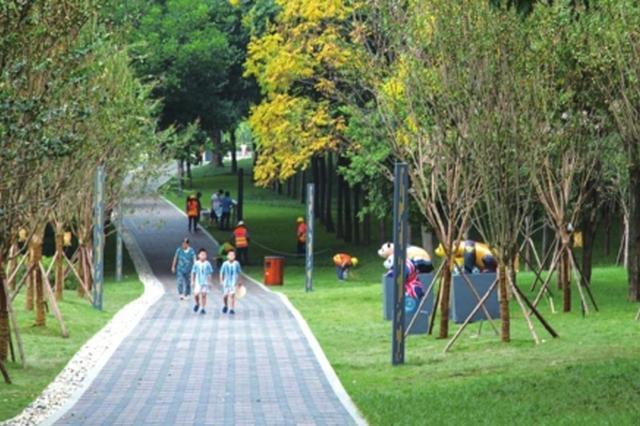 成都未来社区这么美 出门300米见绿500米见园
