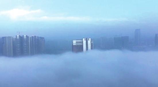 13日大雾,成都见云海奇观(图据网友)