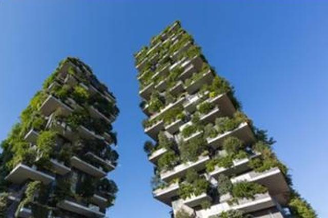 """成都今年将开展""""垂直森林""""试点 大厦楼顶长绿植"""